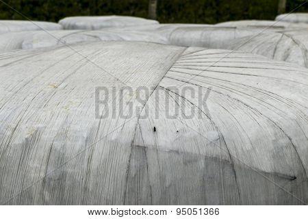 Composting Bales