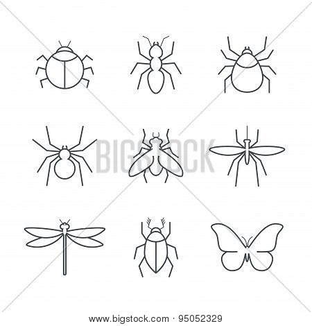 Insect simple vector icon set