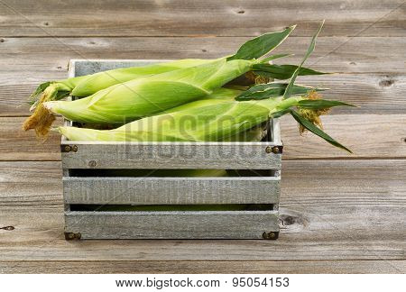 Vintage Wooden Crate Filled With Fresh Corn In Stalks On Wooden Boards.