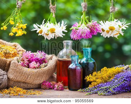 Healing Herbs Bunches, Bottle Of Oil Or Tincture, Hessian Bags With Dried Marigold And Clover. Herba