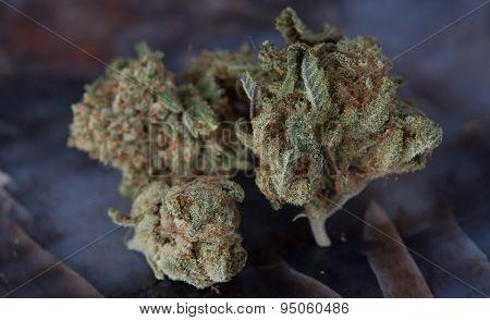 Close up of deep sleep medical marijuana