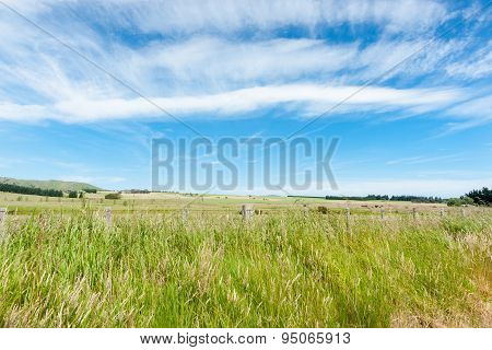 Rural Background,