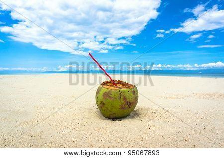 Coconut On A White Beach
