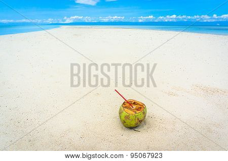 Coconut Lies On The White Sands