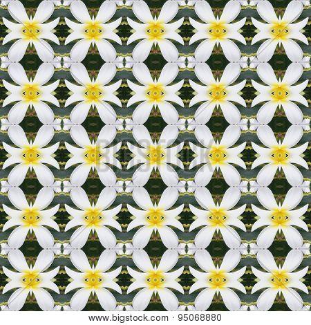 White Frangipani Flowers, A Bouquet Of Flowers Seamless