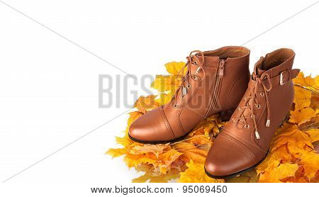 Pair Of Brown Female Boots On A Background Of Golden Autumn Leaves