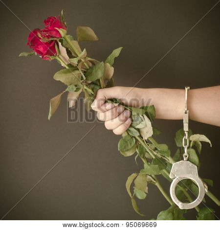 Red Rose In Hand With Handcuffs