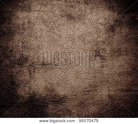 Grunge background of beaver leather texture