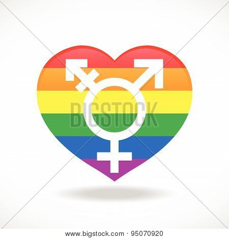 Pride flags heart signs and sex sign vecter design