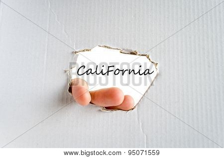 California Text Concept
