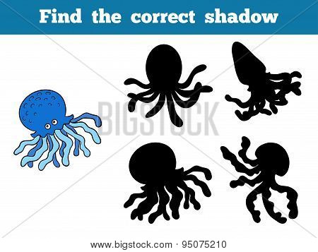 Find The Correct Shadow (octopus)