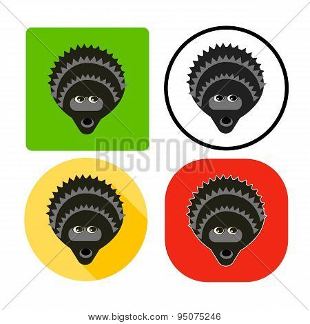 Vector Illustration Set Character Muzzle Hedgehog