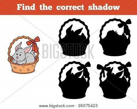 Find The Correct Shadow (rabbits Ith Basket)