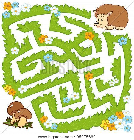 Maze Game: Help Hedgehog To Find A Way To Mushrooms
