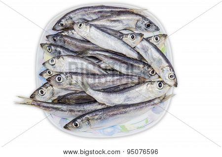 Several Capelin On Dish