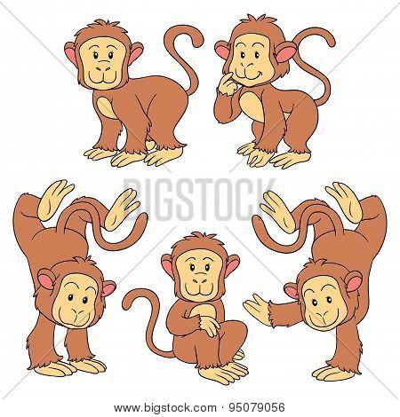 Set of vector animals (monkeys)