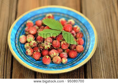 Wild Strawberries Fragaria Viridis In Blue Plate With Green Strawberry Leaf Selective Focus