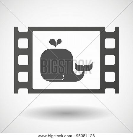 35Mm Film Frame With A Whale