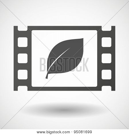 35Mm Film Frame With A Leaf