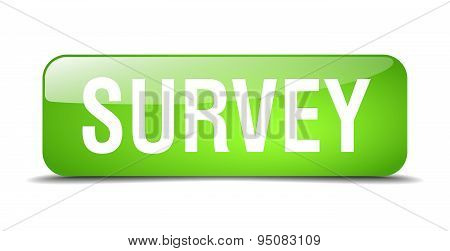 Survey Green Square 3D Realistic Isolated Web Button