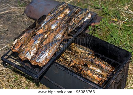 Fish Mackerel Hot Smoked Outdoors