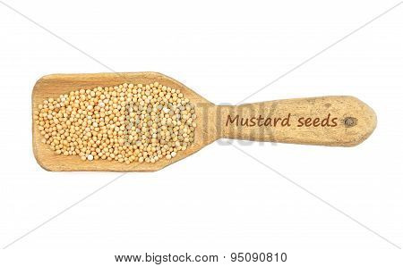 Mustard Seeds On Shovel