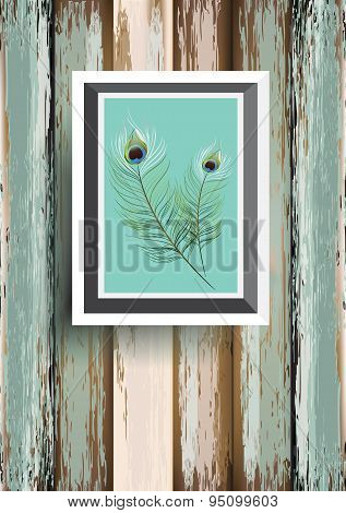peacock feater  on wood background