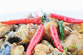 pic of catfish  - Thai food name Spicy Fried Stir Catfish - JPG