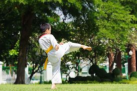 picture of taekwondo  - Boy practice taekwondo in the park during day - JPG