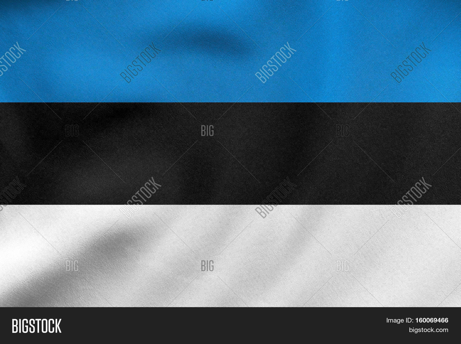 Flag estonia waving real fabric image photo bigstock for The fabric of reality