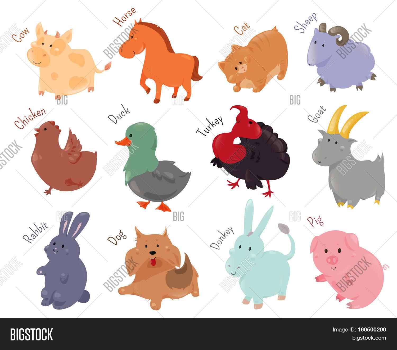 set cute cartoon farm animal icon image u0026 photo bigstock