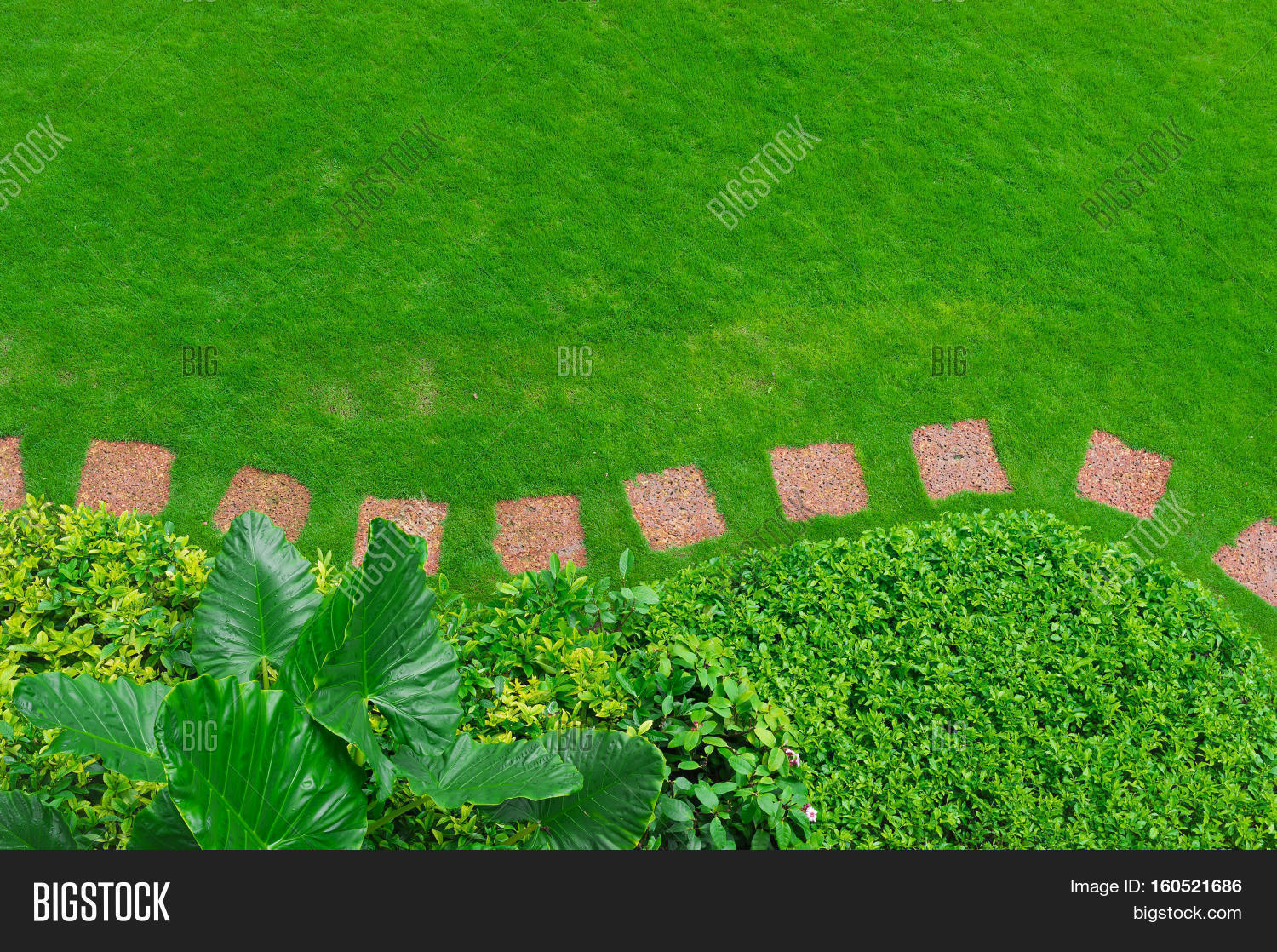 Pathways green lawns landscaping image photo bigstock for Garden scaping