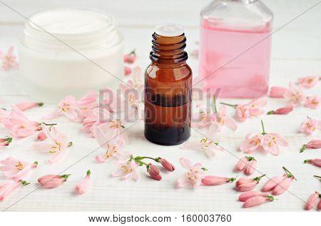 Botanical fragrant cosmetic. Essential oil bottle, facial cream, tonic, fresh pink blossom petals. Focus on bottle.