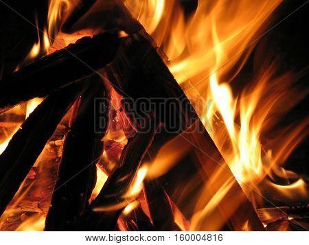 Fire flames on a black background. Burn bonfire.