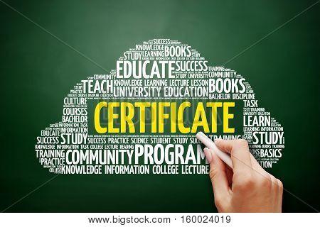 Certificate Word Cloud, Education Concept