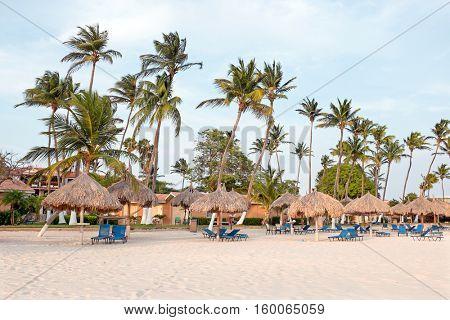 Palm trees, grass umbrellas and beach chairs on the beach at Aruba island