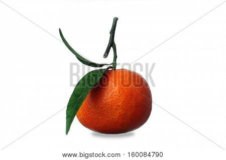 Image of an orange studio isolated on white background