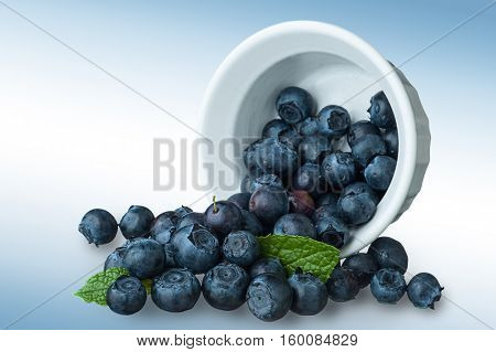 Close-up image of blueberries and bowl, studio isolated on white background