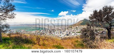 Panoramic view of the Cape Town, amazing landscape of a coastal city, scenic destination, travel to South Africa