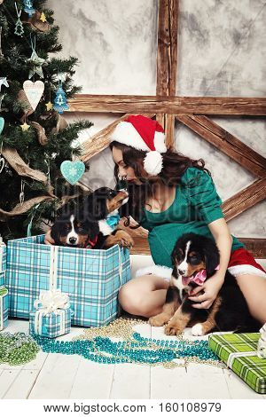 Pregnant woman in suit with a pin-up dog near Christmas tree.