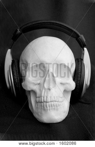 Headphones Cranium