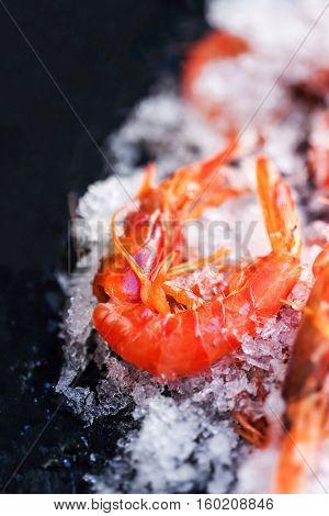 Ocean gourmet dinner background - Fresh raw shrimps