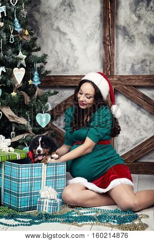Pregnant woman in a suit with a pin-up puppy dog near Christmas tree.
