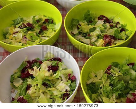 Lettuce And Salad In The Canteen