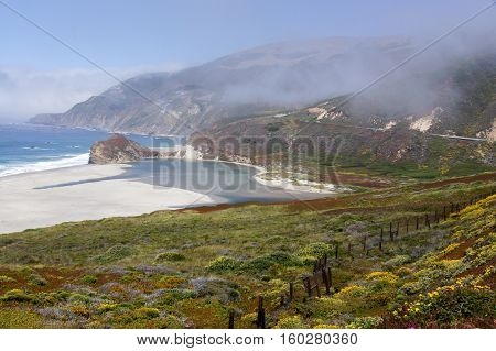 Little Sur River with Fog at Springtime. Big Sur, California, USA.