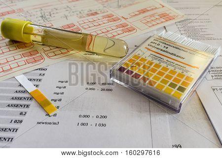 Test Tube For Urine Examination
