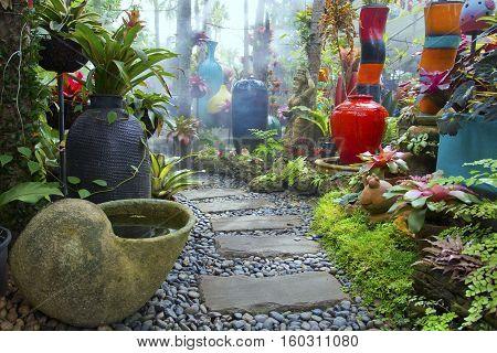 garden of design .Color mix of Ornamental plants.