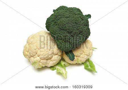 Isolated cauliflower on white. Element of food design.