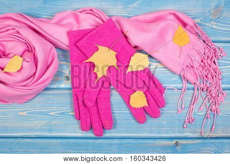 Gloves And Shawl For Woman, Clothing For Autumn Or Winter