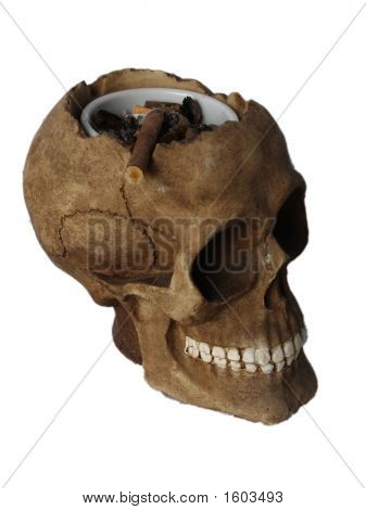 Ashtray In Skull